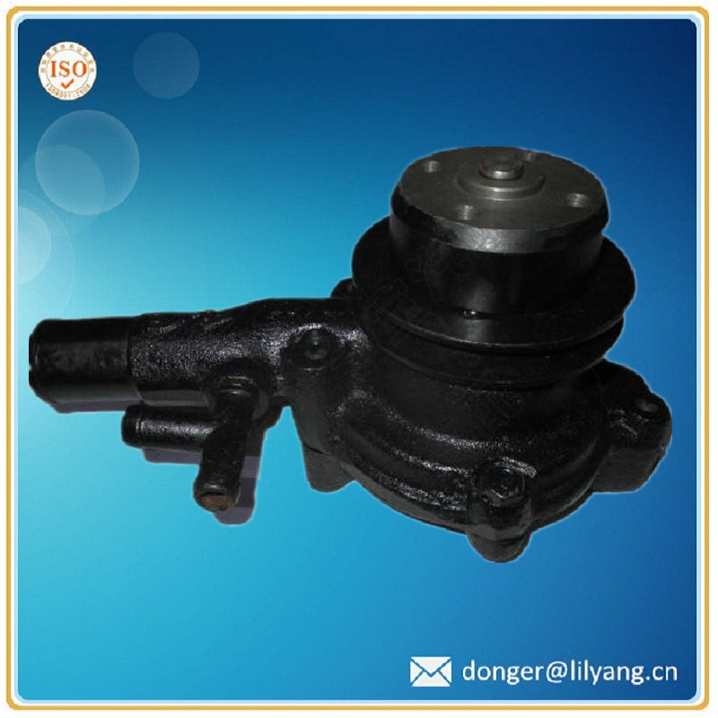 Casting Automotive Engine Water Pump Casing for Toyota, Pump Housing