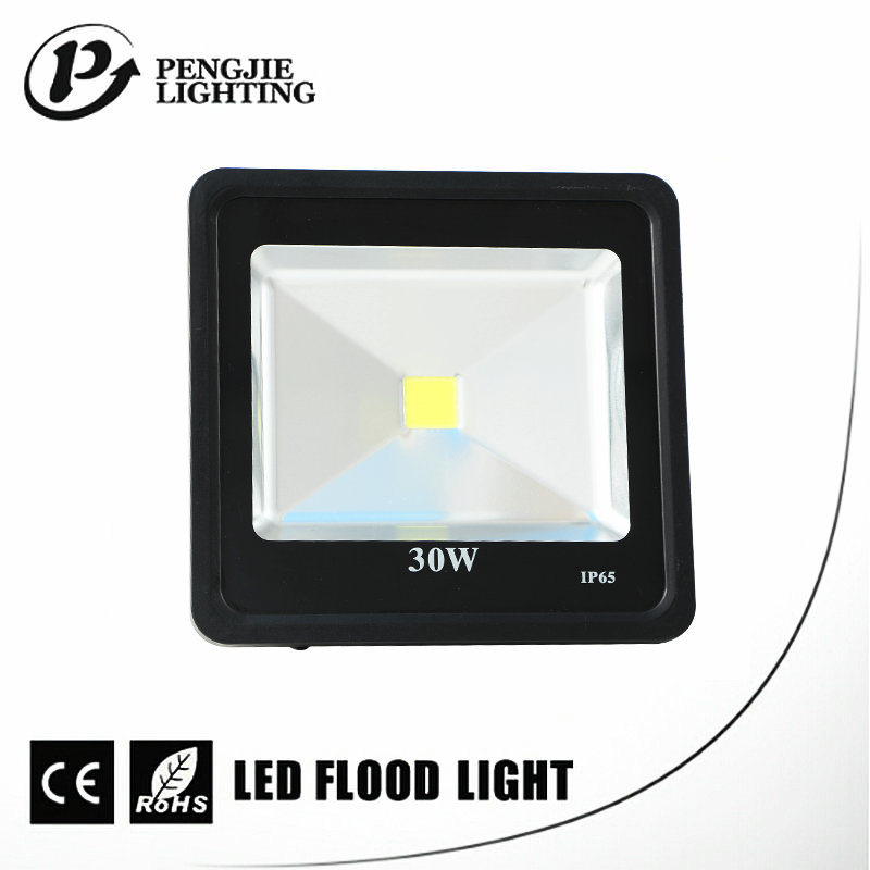 COB Chip Waterproof IP65 Better Heat Dissipation Outdoor LED Flood Lamp