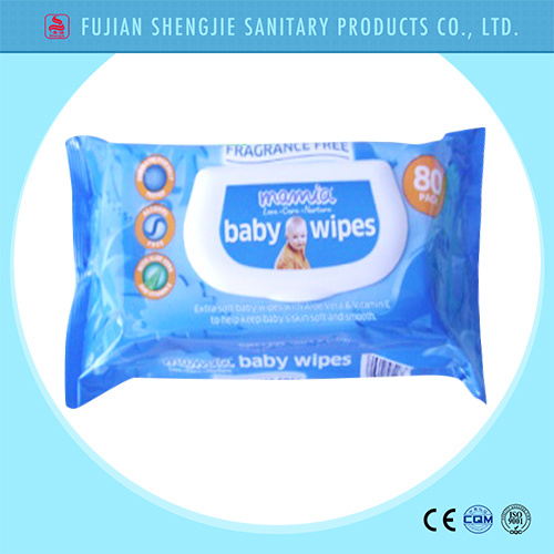 OEM Nice Design Hand and Mouth Skin Care Baby Wet Wipe