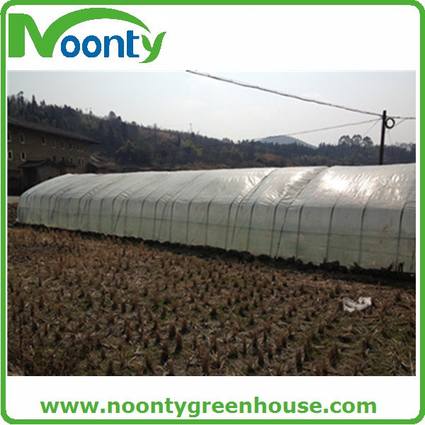 Mushroom Greenhouse with Black System and Shade Net System