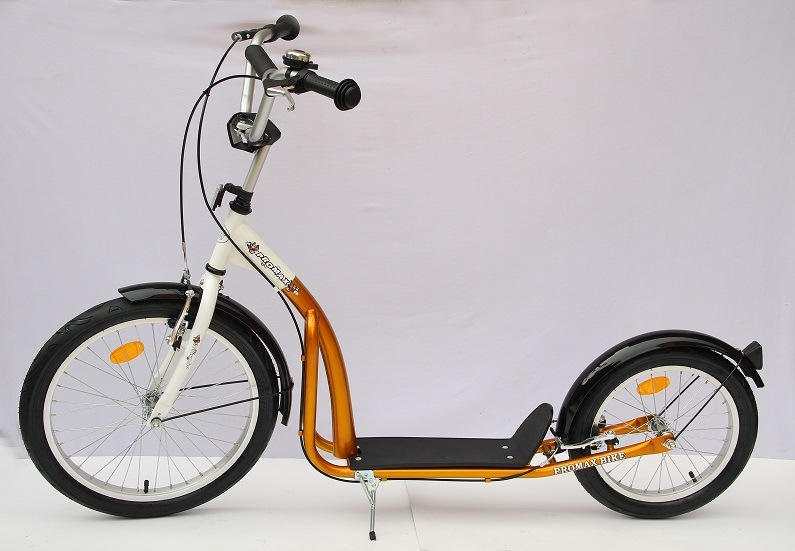 """20"""" Steel Frame Foot Scooter (SC2016A)"""