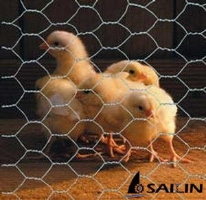 Sailin Farm Wire Mesh Fence with ISO