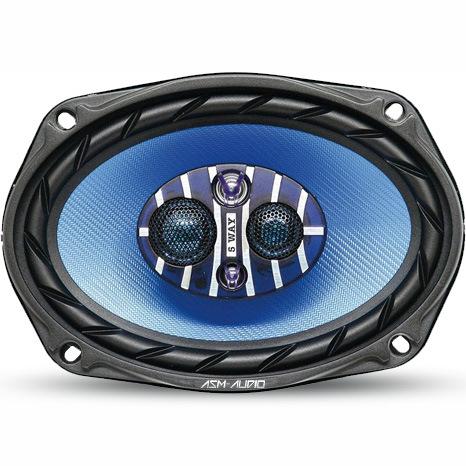 """300 W Max. 6""""X9"""" Car Speaker (TS-WA9300)"""
