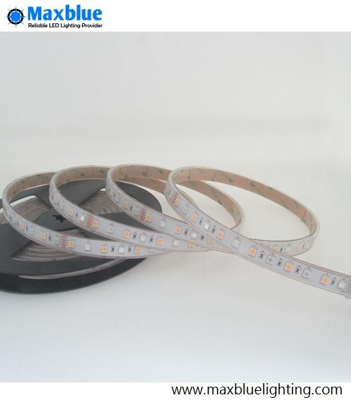 RGB LED Strip/LED Strip Light/Flexible LED Strip