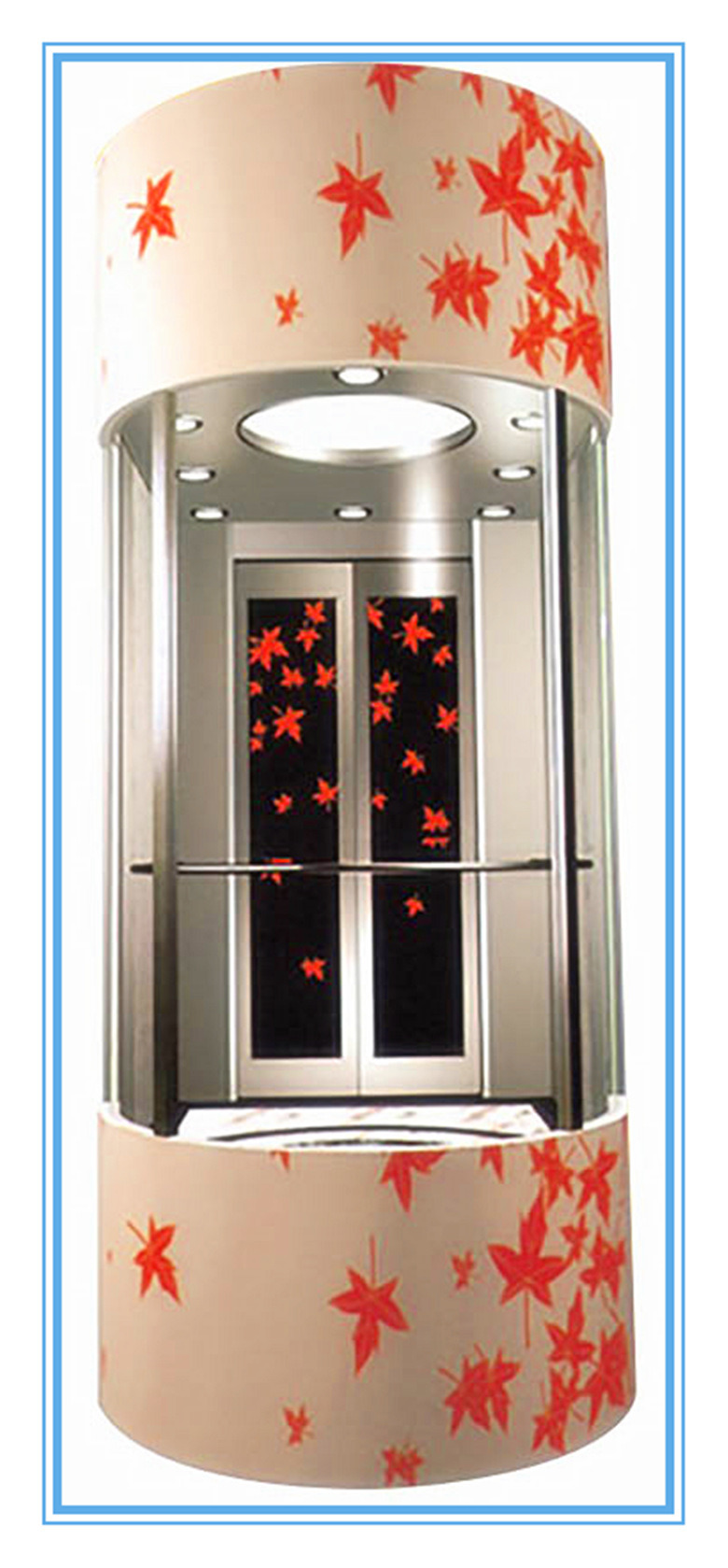All Kinds of Lift Including Passenger/Goods Cargo/Freight/Hospital/Home/Villa/Sightseeing/Dumbwaiter/Observation
