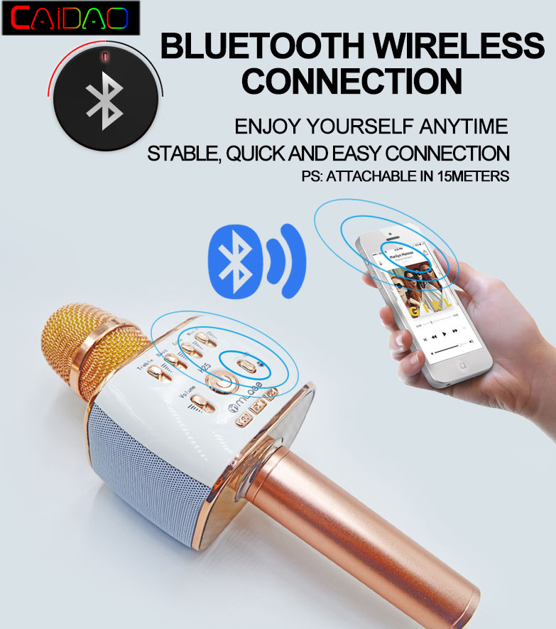 Hot Sale Professional Microphone Handheld Wireless Bluetooth Karaoke Microphone