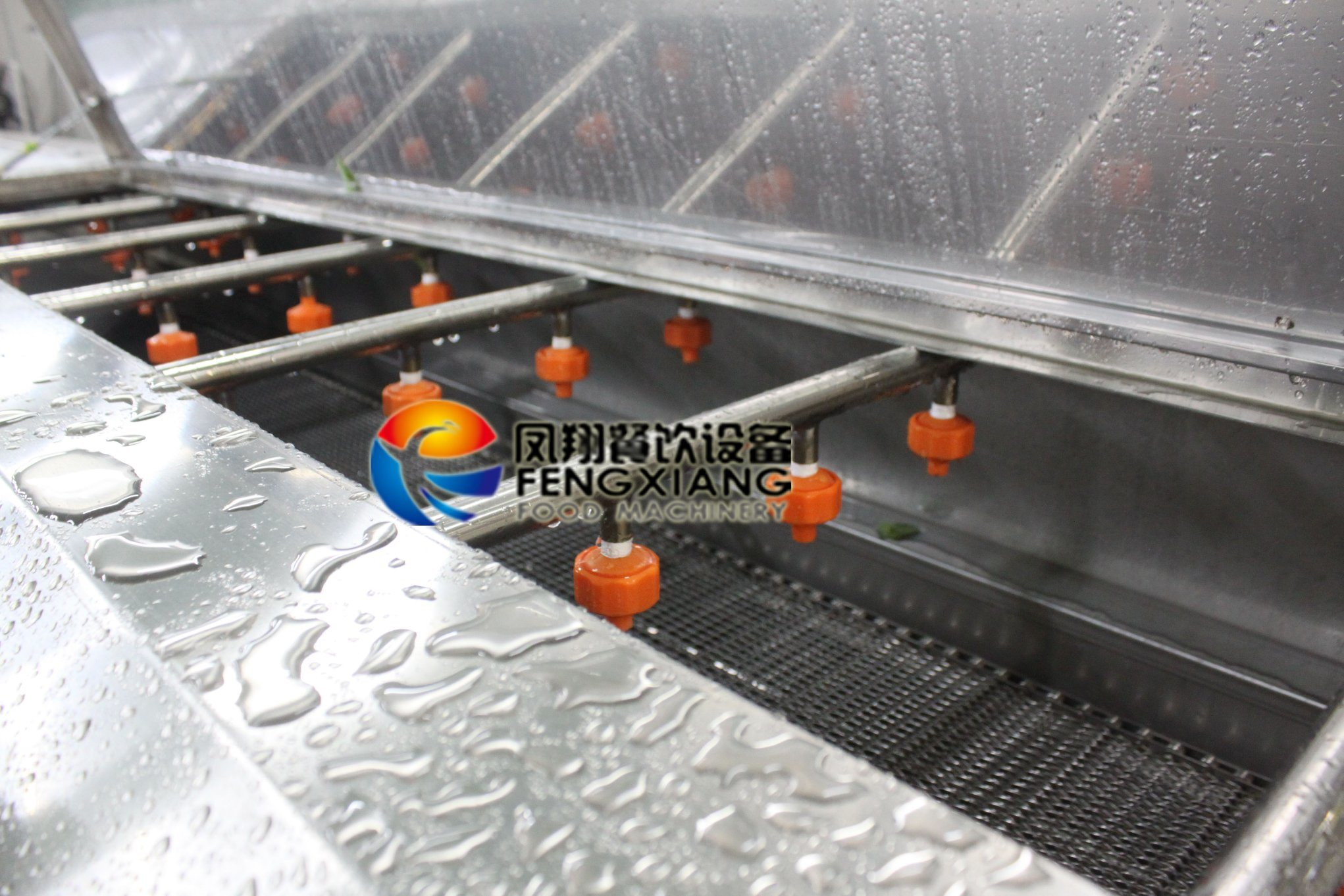 Dup-5000 Vegetable Fruit Washing Machine by Water Spray and Conveyor