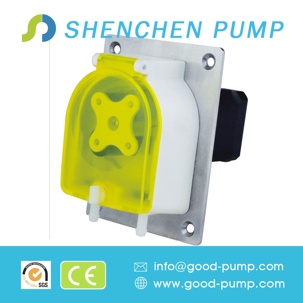 DC Brushless Motor OEM Peristaltic Pump, Metering Gear Pump