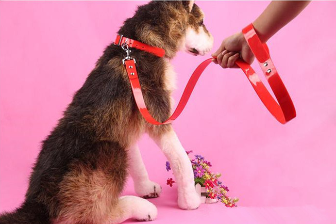 Pet Products Supply Big Middle Dog Leash (L007)