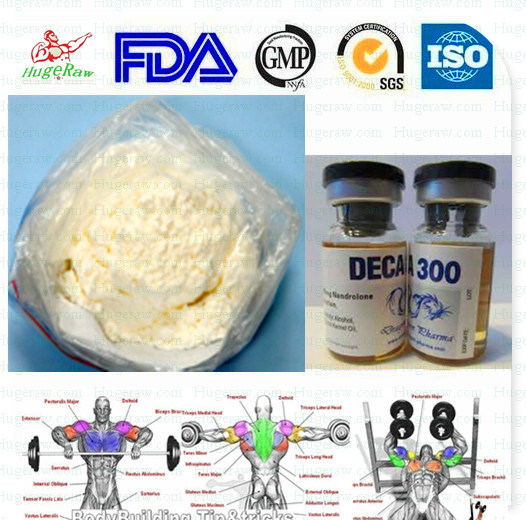 Anabolic Testosterone Steroid Hormone Raw Powder Nandrolone Decanoate Steroid