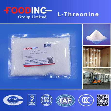Chinese Manufacturer High Quality Cheap Price Feed Additive L-Threonine