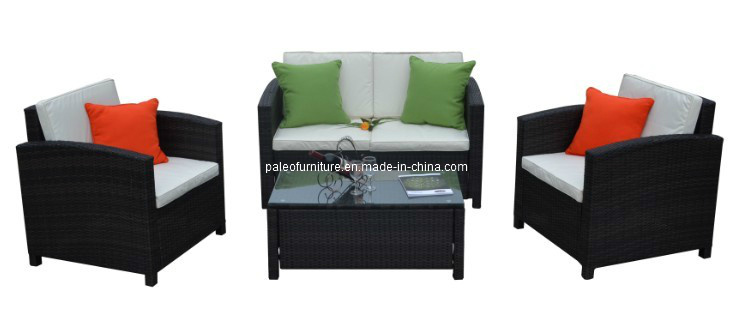Modern Garden Furniture Rattan Sofa Set (PAS-061)