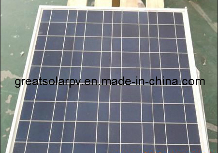 Great Competitive in MID East Market! 60watt Poly Solar Panel Module