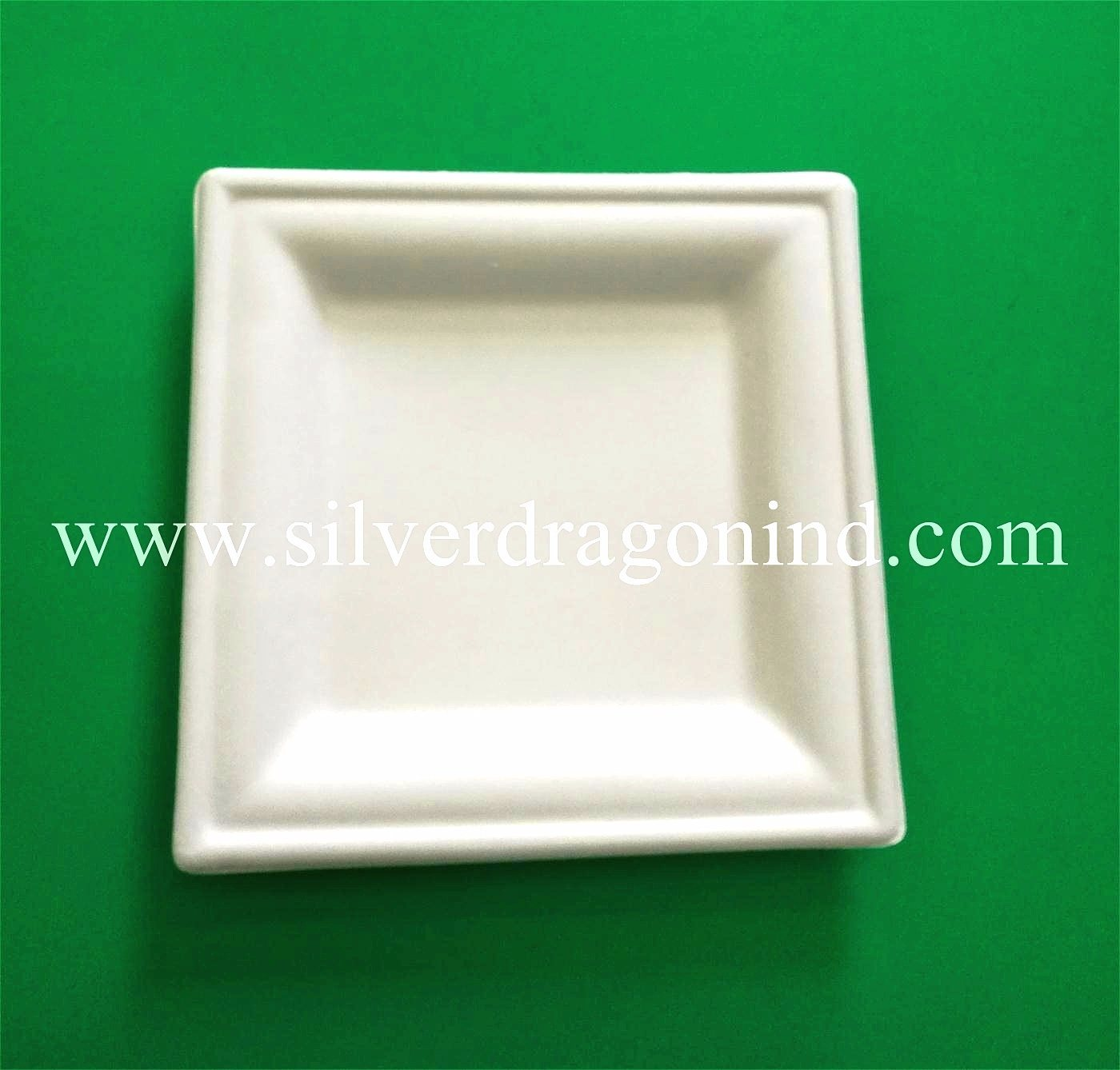 Biodegradable Disposable Compostable Sugarcane Bagasse Paper Plate