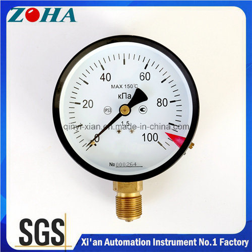 Ukraine Customer General Pressure Meters Radial Direction 100kpa with 4 Inch Nominal Diameter