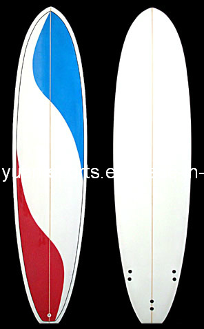 Various Colour and Shape Fun Board, Long Short Surfboard 10 12