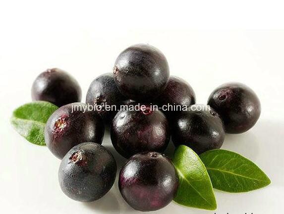 Strong Antioxidant Natural Acai Berry Extract, Amino-Acids 4: 1, 10: 1