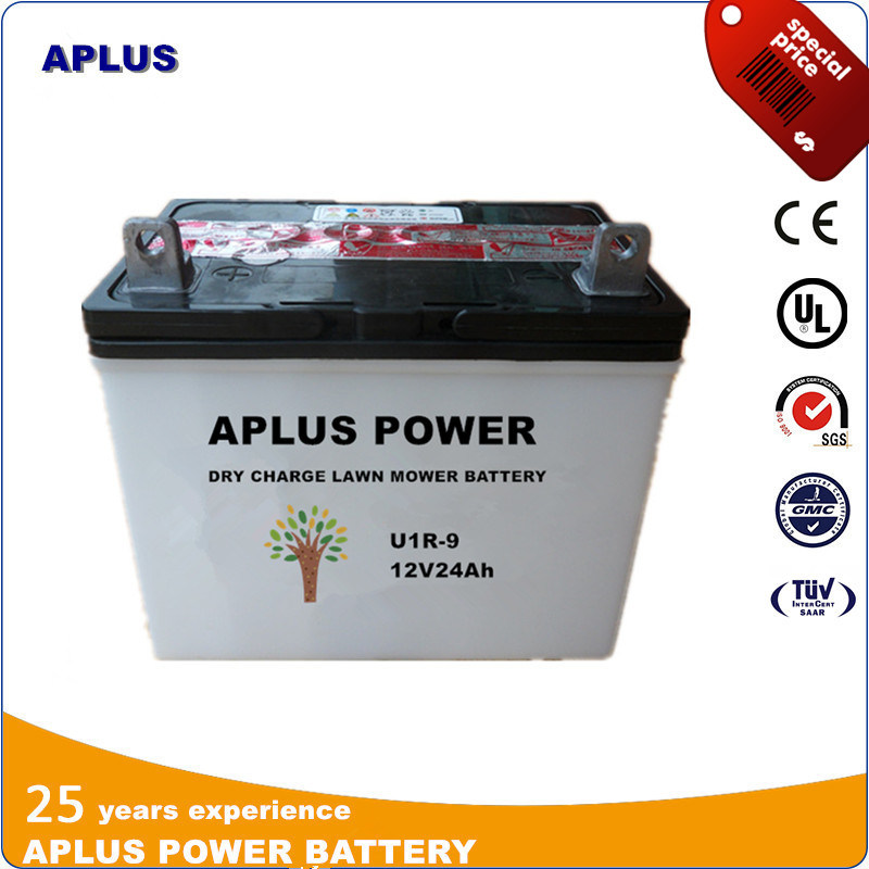 U1r9 12V24ah Dry Charge Lead Acid Battery for Lawm Mower