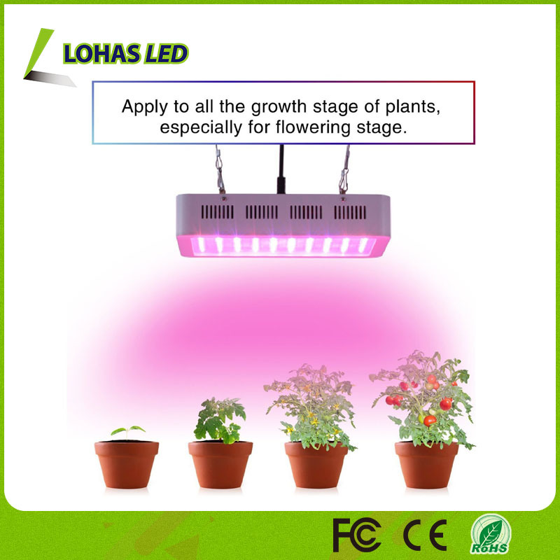 Full Spectrum 300W 600W 900W 1000W 1200W Panel LED Plant Grow Light for Bloom and Vegetable