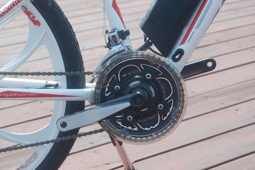 Mountain Electric Bicycle (TDE1201Z)