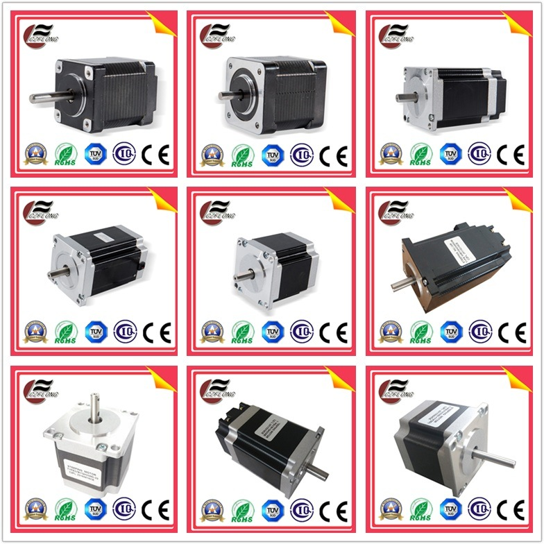 2 Phase Electric Brushless DC Servo Stepper Stepping Motor for Auto Parts