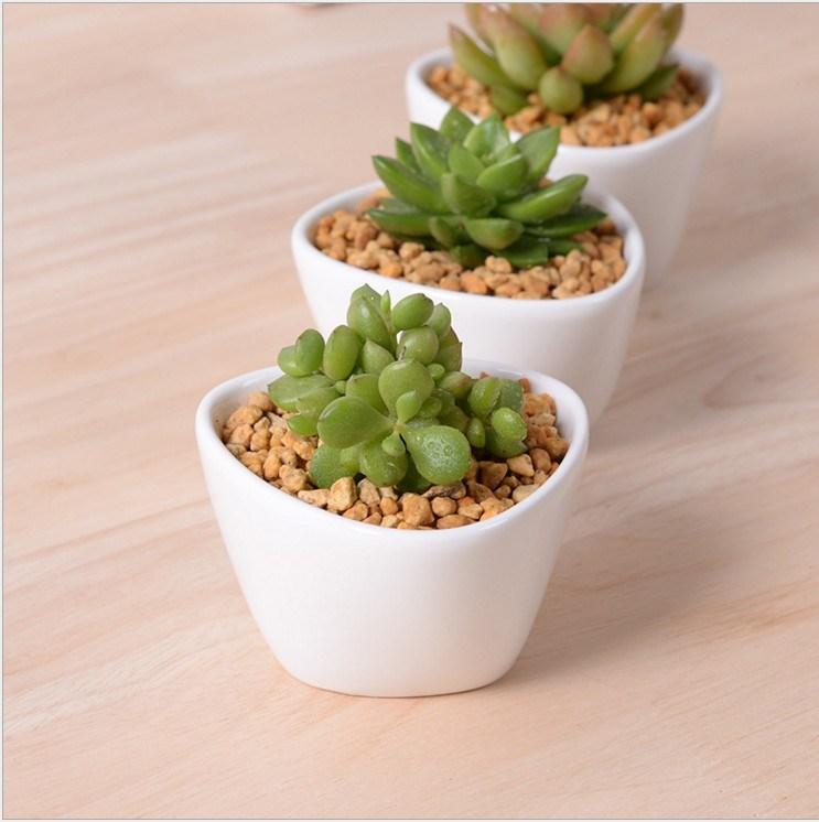Mini Desktop Mini Ceramic Flowerpot