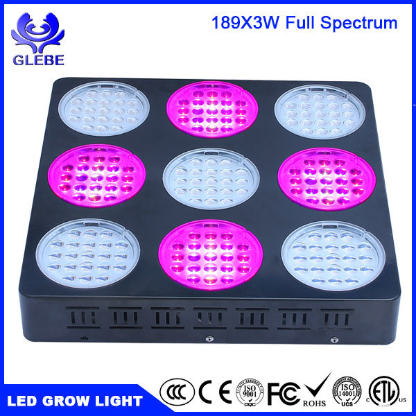 LED Effect Lights Grow High Power LED Grow Light 1000W Hydroponics LED Grow