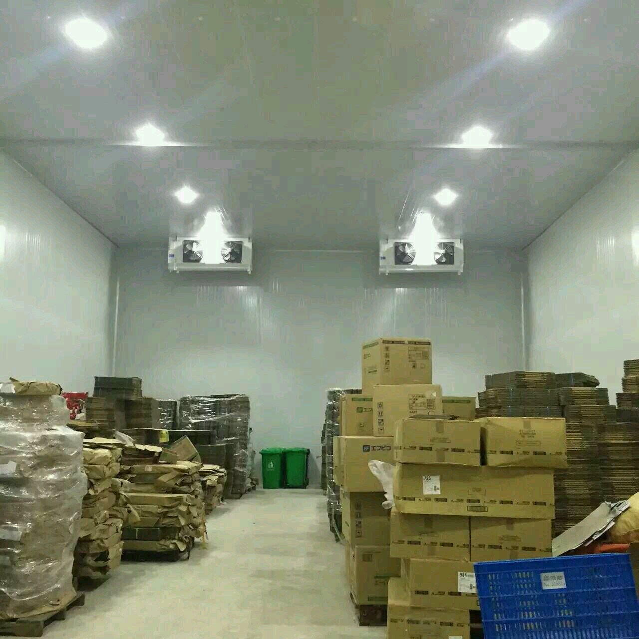 Cold Room and Freezer for Fish, Meat, Food, Fruit, Vegetable