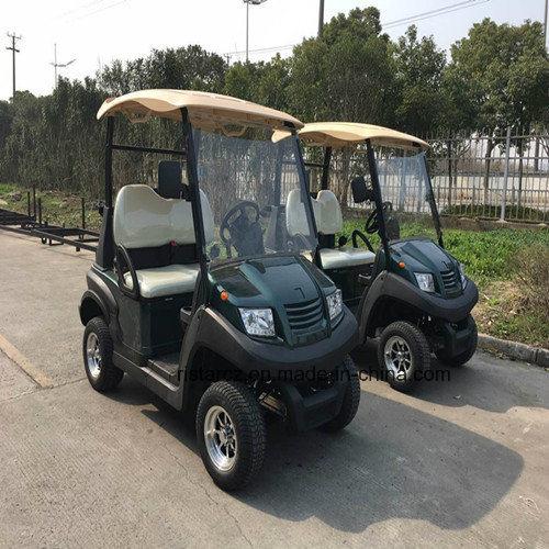 2017 New Model 2 Seats Electric Golf