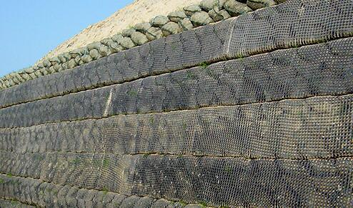Uniaxial Geogrid PP for Building High Way or Railway