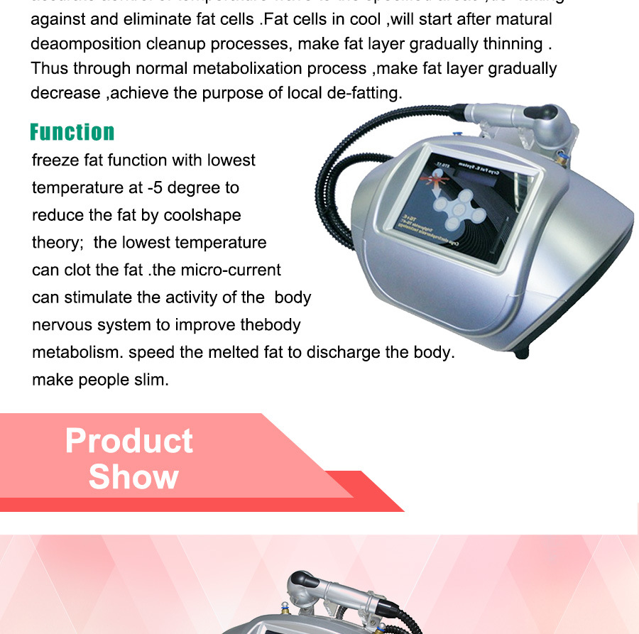 Portable Freezed Fat Beauty Equipment (ETG17)