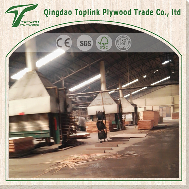High Quality 7mm Thickness Waterproof Eucalyptus Plywood for Floor