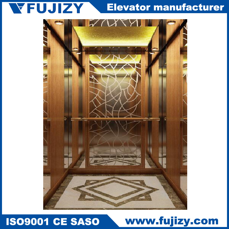 304 Stainless Steel Home Elevator with Cheap Price