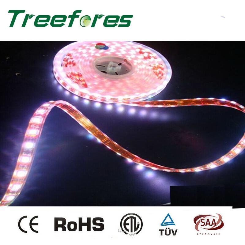 12V 24V 60LED/M 5050 Waterproof LED Strip IP65