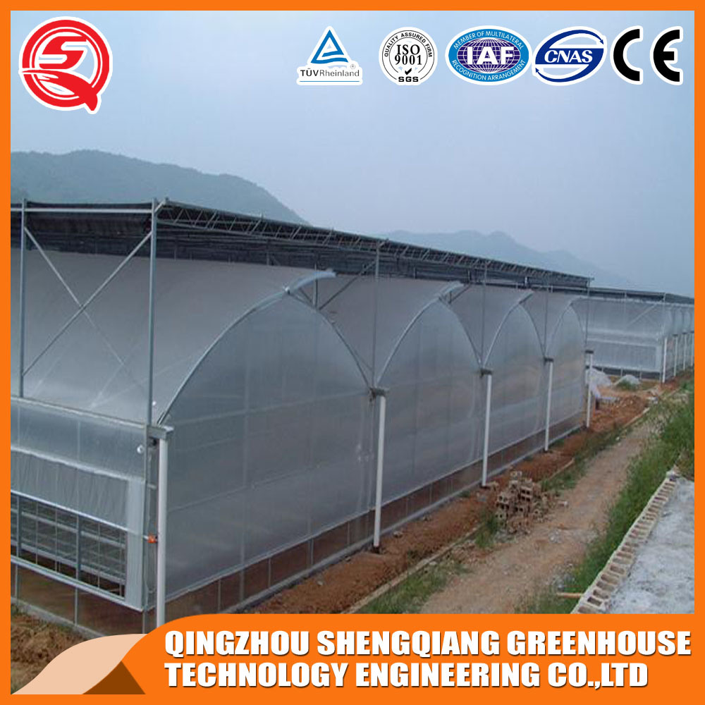 Agriculture Multi Span Plastic Green House for Vegeatbles