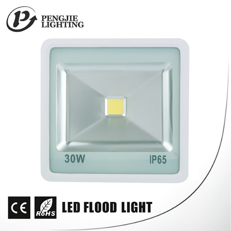 Die-Casting Aluminium Housing Corrosion Resistant 30W LED Flood Lamps