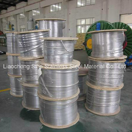 Stainless Steel Coiled Pipe with High Quality and Best Prices