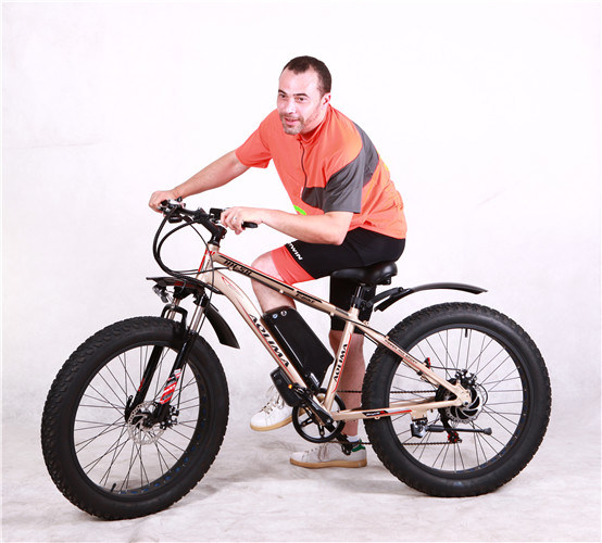 Fat Tire Electric Bike, 60V 1000W Electric Bicycle