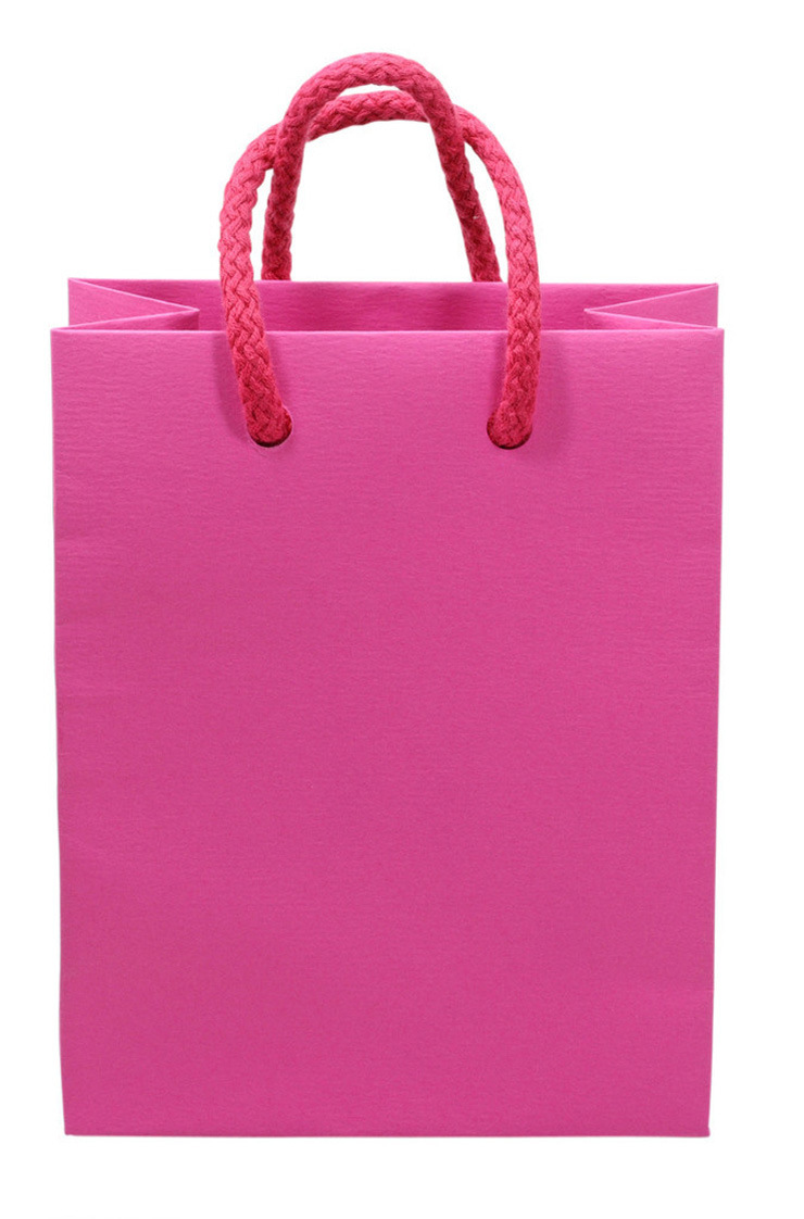 Top Quality Custom Paper Gift Bags/Promotional Bags (FLP-8926)