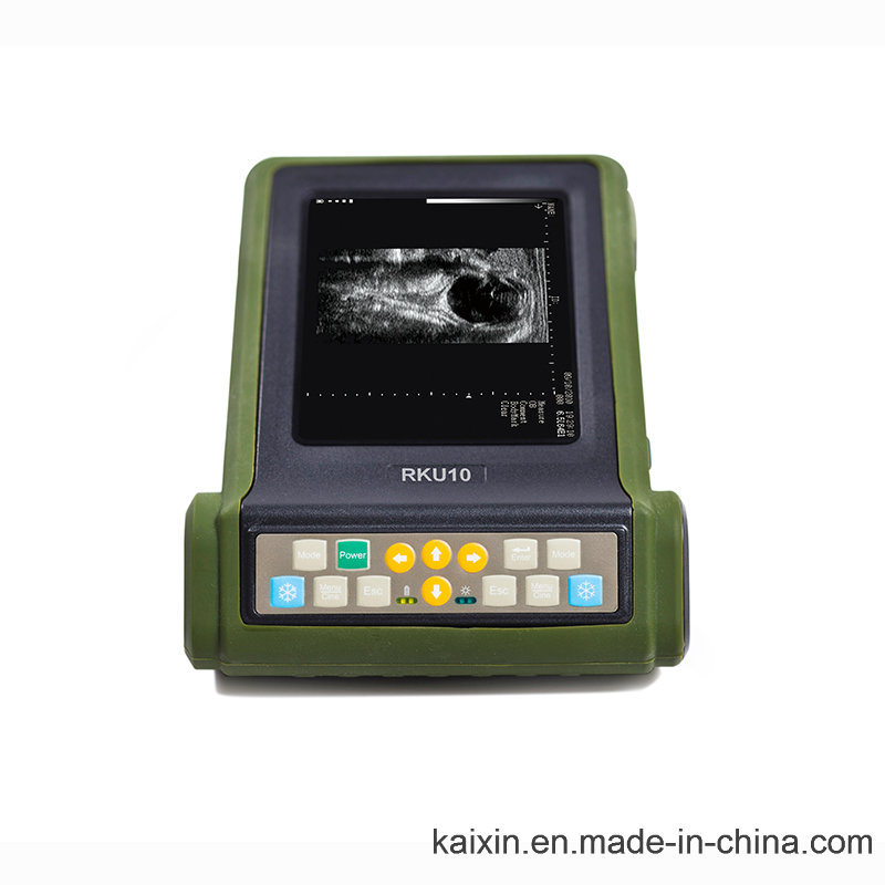 Rku10 Veterinary Ultrasonic Diagnostic Instrument for Bovine