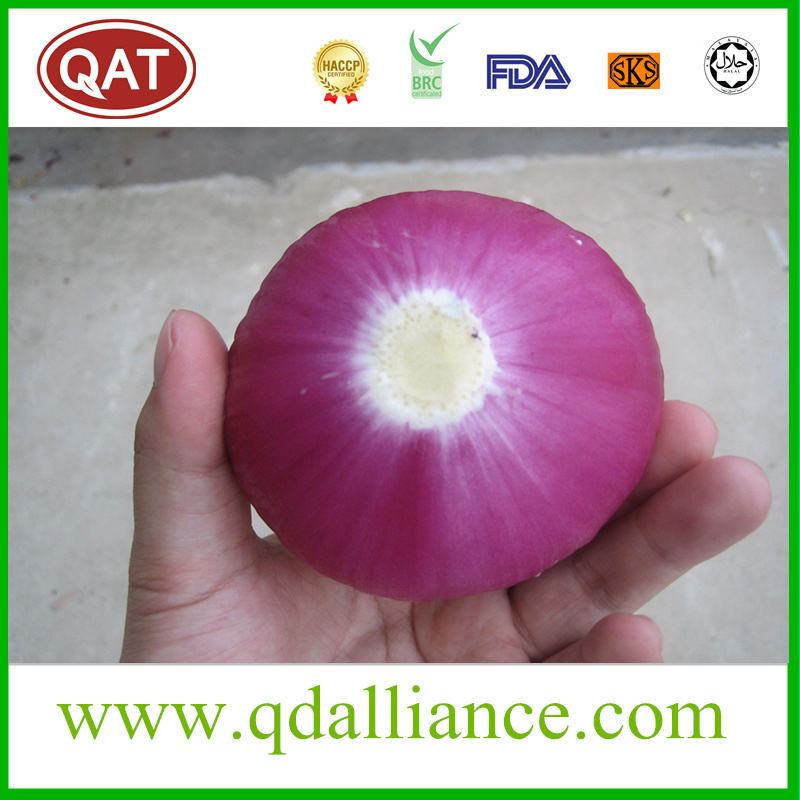 Fresh Peeled Onion