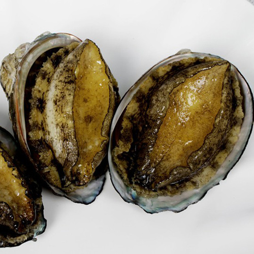 Delicious Spicy Abalone Sauce for Food Ingredients