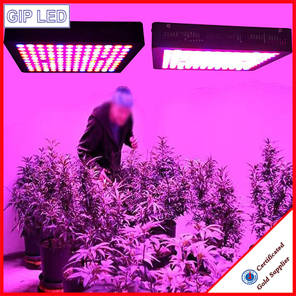 Best 600W Full Spectrum LED Grow Lights with Veg/Bloom