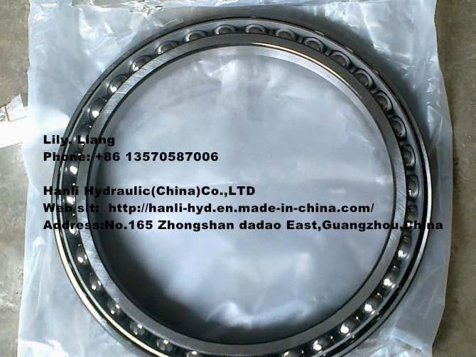Hydraulic Stainless Steel Slewing Bearing for Excavator/ Concrete Mixer/ Bulldozer
