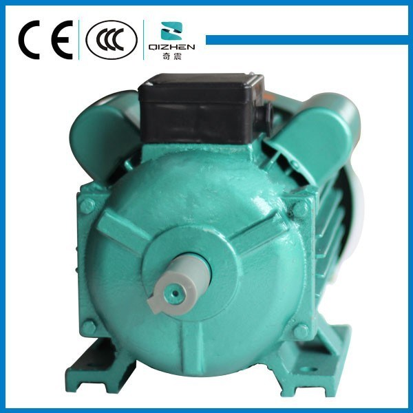 YL Series Single Phase AC motor
