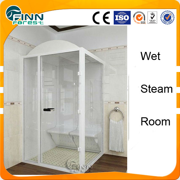 Modern Web Shower Steam Room
