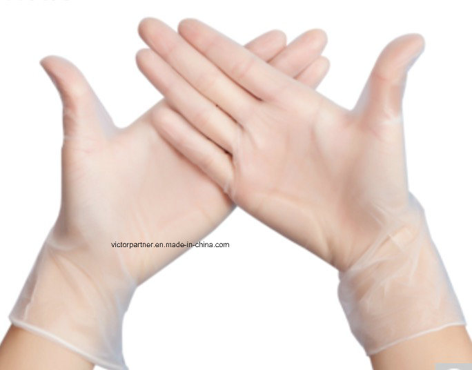Small MOQ Disposable PVC Gloves for Food Dental Electronics Use