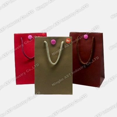 Musicable Gift Bag, Recordable Paper Bag, Paper Bag (S-8101)
