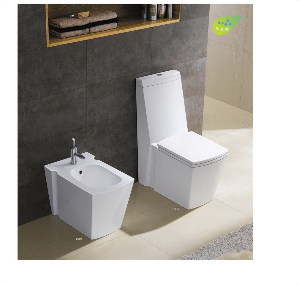 Hot Sell New Design Toilet Seat Ce-T2010