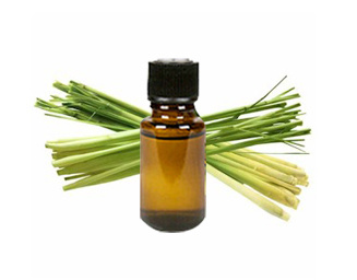 Pure Natural Lemongrass Essential Oil Factory Price